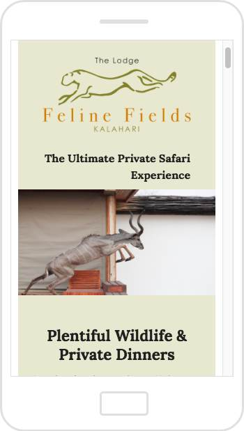 Feline Fields email newsletter design