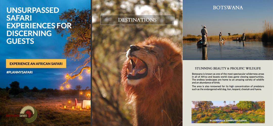 Martin Meyer Safaris brochure design