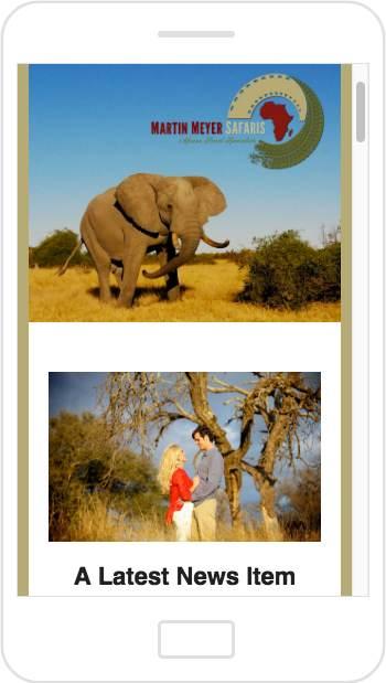 Martin Meyer Safaris email newsletter mobile design