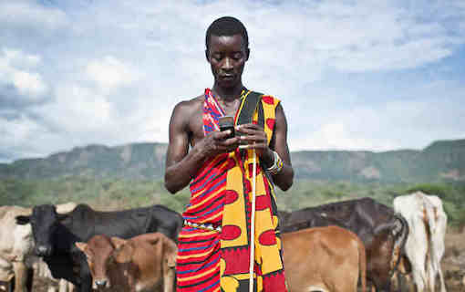 Maasai checking mobile phone