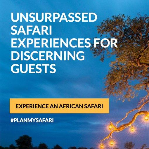 Safari tour brochure design