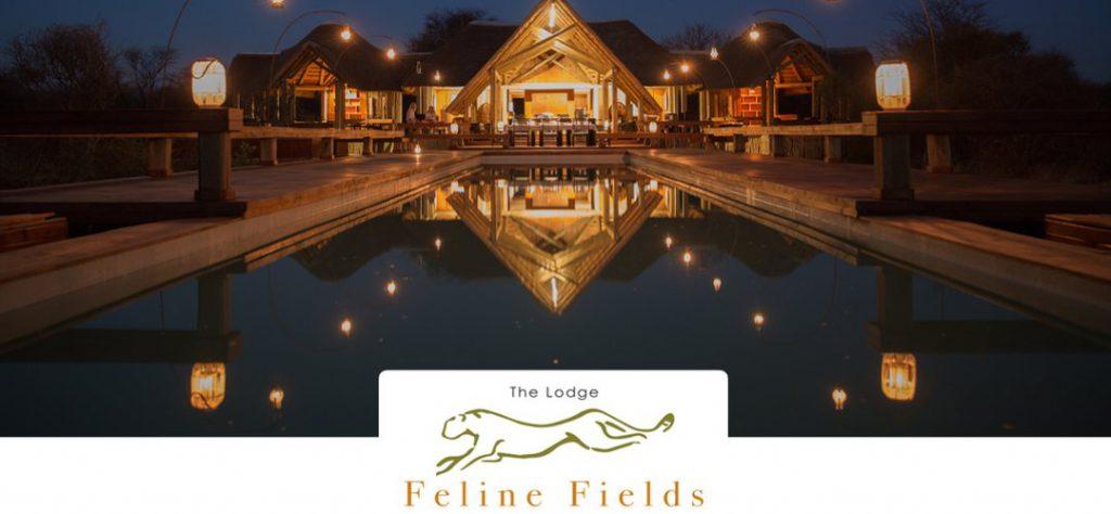 Feline Fields trade show presentation