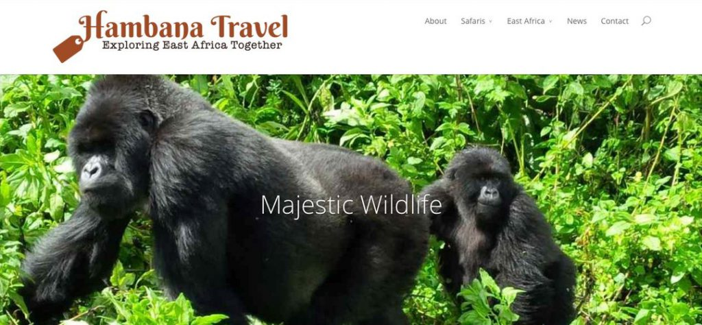 Hambana Travel safari tour operator website design