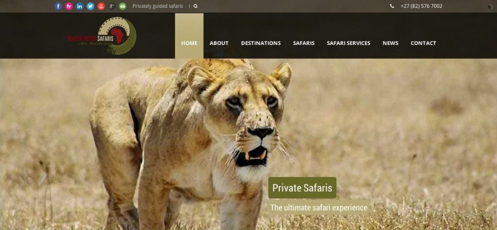 Martin Meyer Safaris web design