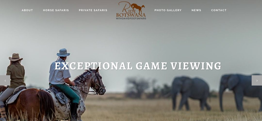 Ride Botswana website design
