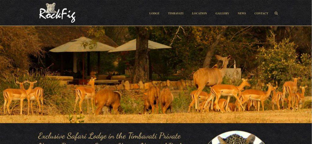 RockFig Safari Lodge website design
