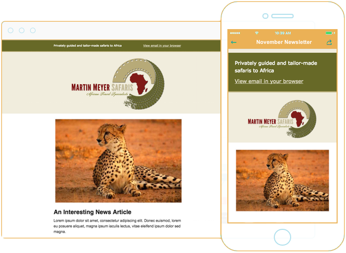 Email newsletter design for safari lodge