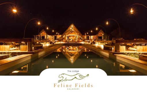 Feline Fields brochure - cover