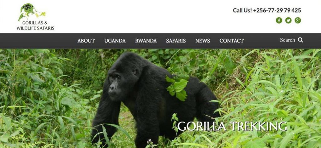 Gorillas and Wildlife Safaris website design