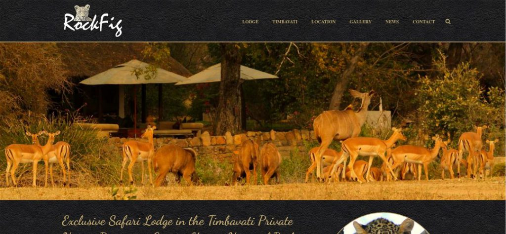 RockFig Safari Lodge website design