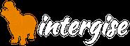 intergise-logo-white