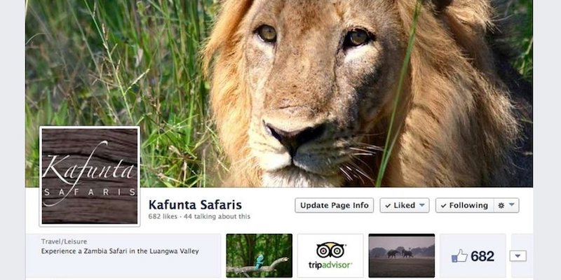 Kafunta Safaris Facebook page banner