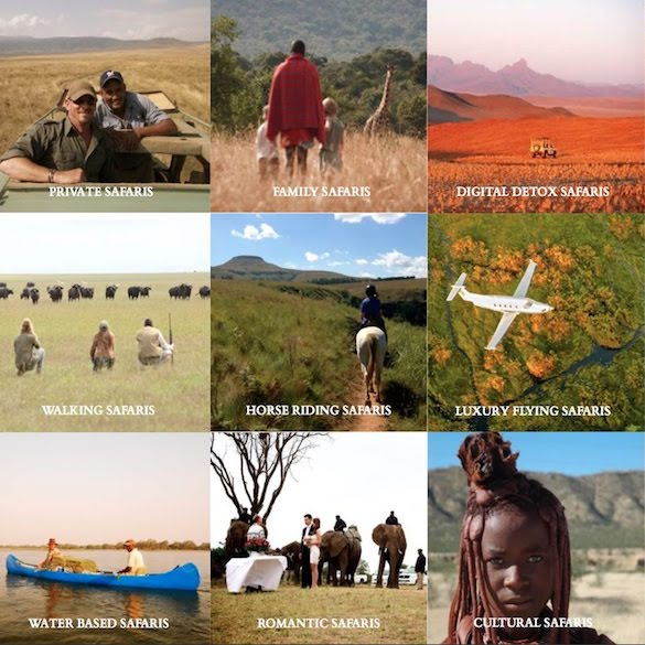 Martin Meyer Safaris brochure