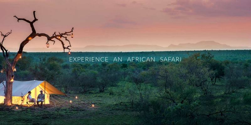 Martin Meyer Safaris website banner