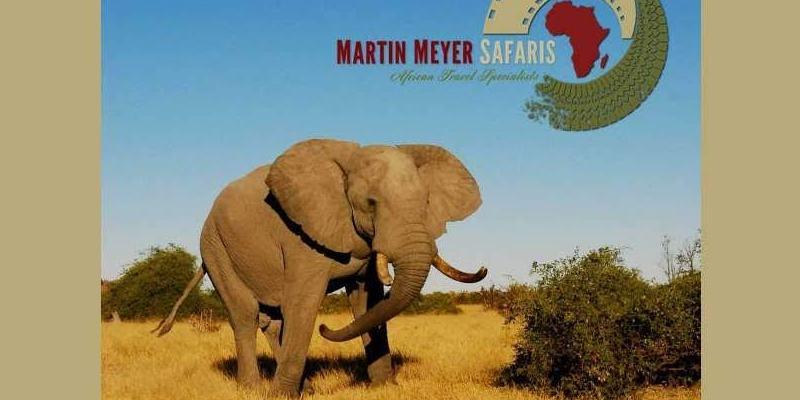 Martin Meyere Safaris email header