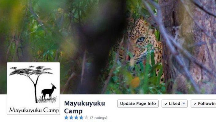 Mayukuyuku Camp Facebook page banner