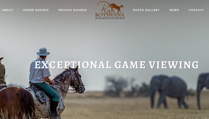 Ride Botswana website design