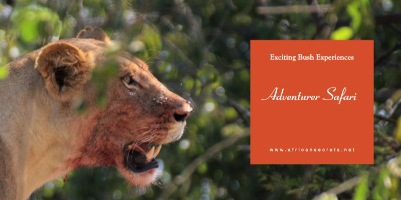 Island Safaris promotional video