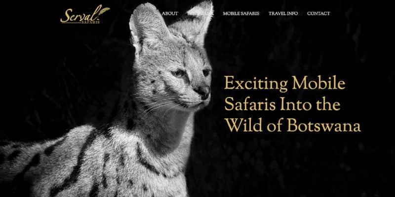 Serval Safaris website banner