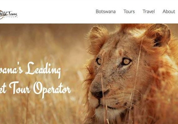 Central Khalahari Wild Tours website banner