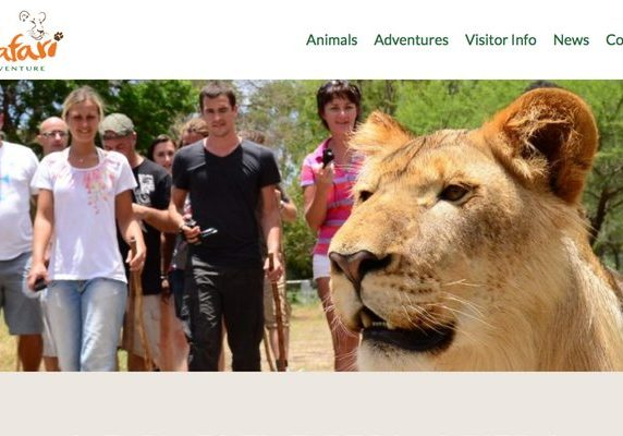 Safari Adventures website banner